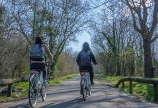 À vélo le long de la Jalle
